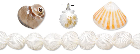 Shell Beads and Components