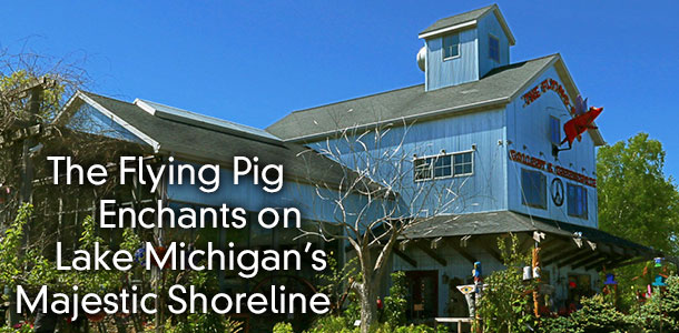 The Flying Pig Enchants on Lake Michigan's Majestic Shoreline