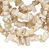 Bead, mother-of-pearl shell and golden lip shell (natural), small chip, Mohs hardness 3-1/2. Sold per 34-inch strand.