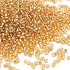 Seed bead, Dyna-Mites™, glass, silver-lined gold, #11 round. Sold per 1/2 kilogram pkg.