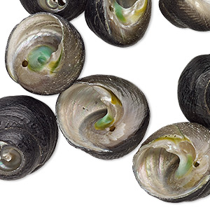 bead, black turban shell (natural), 24x15mm-28x15mm, mohs hardness 3-1/2. sold per pkg of 10.