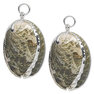 focal, abalone shell (natural) and silver-plated steel, green and iridescent white, 31x20mm. sold per pkg of 2.