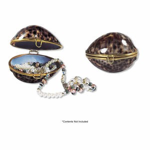Fashion Accessories Cowrie Shell Natural