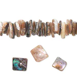 Beads Abalone Multi-colored