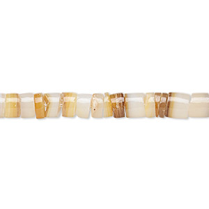 Beads Golden Lip Shell Beige / Cream