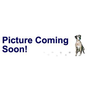 Other Necklace Styles Crystal Multi-colored
